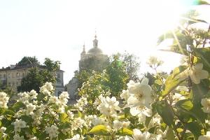 Одну из орловских улиц украсит декоративная цветочная композиция в форме храма