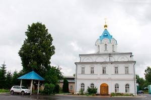 Праздник Балыкинской иконы Божией Матери в Орле. Фоторепортаж