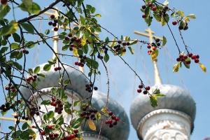 В праздник первоверховных апостолов Петра и Павла архиепископ Антоний совершил литургию в Петропавловском храме Мценска